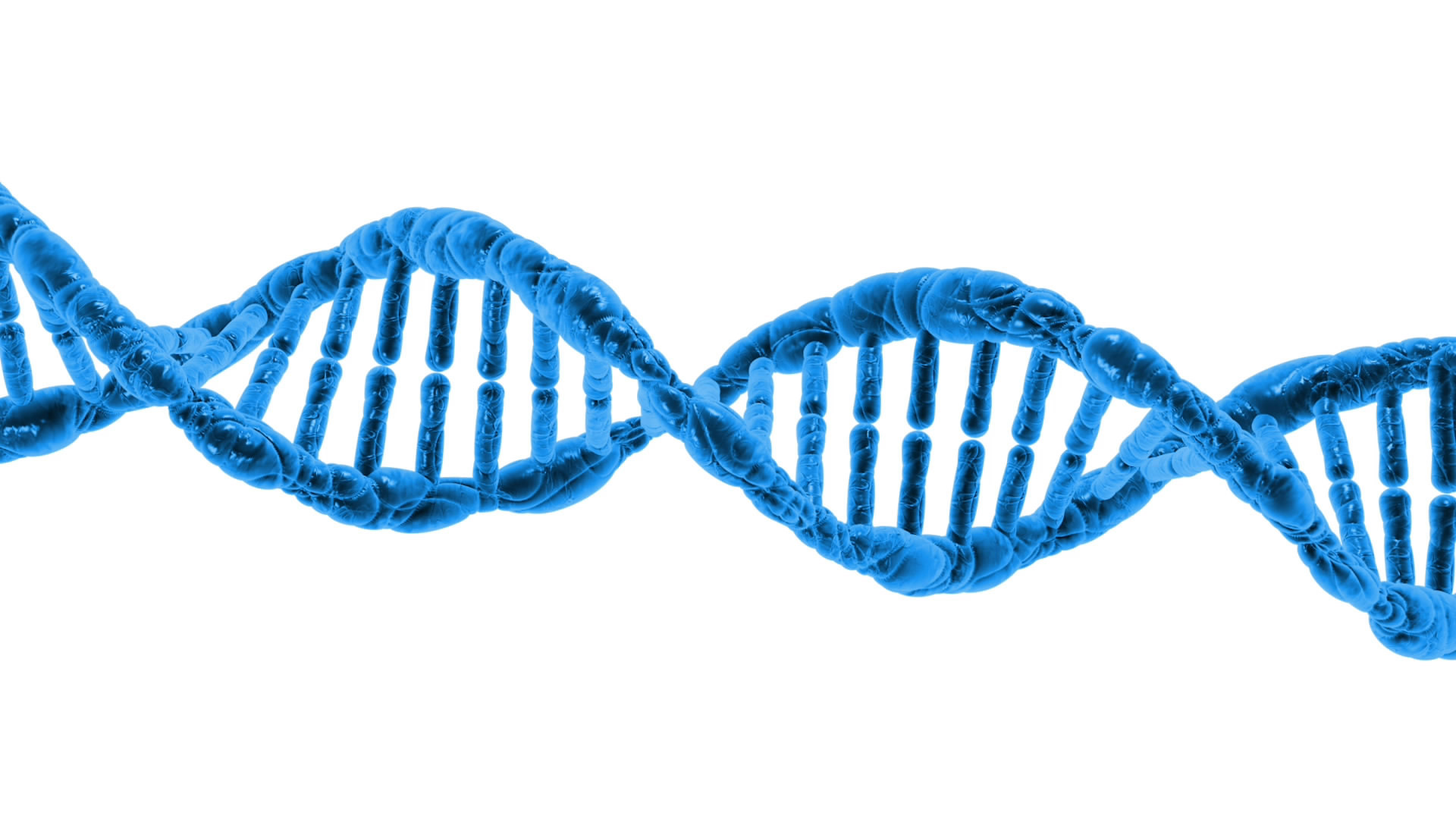 Projet Généalogie ADN